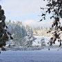 Erster Schnee 29.10.2012
