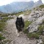 im Urlaub wanderten wir in den Dolomiten ...