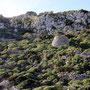 Litoranea Leuca - Otranto, Gagliano del Capo, località Ciolo. Estate.