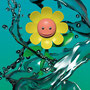 Sunflower man