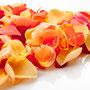 Rosenblüten-Blätter Nr.0544