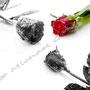 Vereiste-Rose Nr.0034
