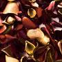 Rosenblüten-Blätter Nr.0090