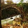 Puente Romano en Los Alcornocales