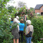 Bordesholmer Landfrauen; Rosennachmittag bei Karina im Juni 2016