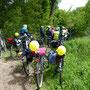 Bordesholmer LandFrauen, Radtour in Neumünster im Mai 2019