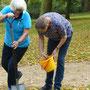 Bordesholmer Landfrauen, Krokusse pflanzen im Oktober 2017