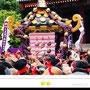 折野さん:三社祭(浅草神社例大祭)、2018年5月20日、浅草寺境内