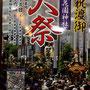 一郎さん:新宿 花園神社大祭, 2019年5月25日(土)-26日(日),  東京都新宿区, 新宿の総鎮守の神社、花園神社の大祭です。今年は「陰の年」にあたり、各町会の神輿が大都会新宿を練り歩きます。