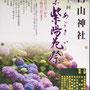 二郎さん:白山神社 紫陽花祭り