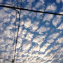 8月 夕方の空