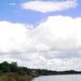 ウトナイ湖初秋 羽繕いする白鳥