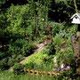 Mein Kräuter- und Gemüseparadies