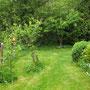 Obere Wiese mit Birnbaum (vorne), Pflaume (Mitte) und Apfelbaum (hinten)