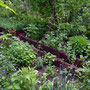 Und nochmal der Kräutergarten