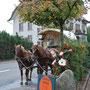 Die Pferdekutsche von Sepp Arnold