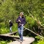 De trail door het moeras