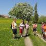 Mostrundwanderweg Weistrach-Kürnberg