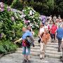 Barockgärten auf der Isola Bella