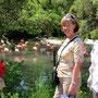 Bei den Flamingos