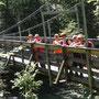 Hängebrücke über der Koppentraun