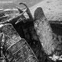 Calvi (FR) - Relitto del B17 - Cabina