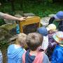 Großes Interesse am Bienenstand.
