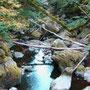 Flussbett der Alb  © Hartmut Hermanns