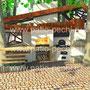 Фото Беседка с барбекю комплексом:мангал, вертел, каминная вставка, плита под казан, тандыр, коптильня горячего копчения
