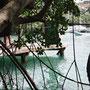 Der Blick aus dem Mangrovenwald auf die Marigotbay
