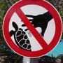 Und auch keine Schildkröten zum Anfassen