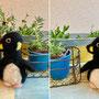 羊毛のペンギン