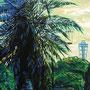 palm tree P50(1167×803)