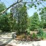Parc Terra Botanica - Angers