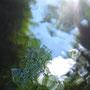 渓魚目線からの空と木々