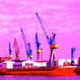 Samstag, 27.02.2016: Wenn du einen rosaroten Hafen siehst, nimm die Brille ab.