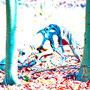 Donnerstag, 09.06.2016: Wann warst du das letzte Mal auf Pirsch im Wald?
