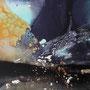 Seaweed Detailansicht