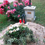 Grab von P. Bonifaz