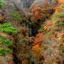 11月 紅葉の不動の滝