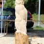 eule in grindelwald 2012 - markus flueck