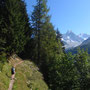 En s'élevant au-dessus de la Joux, avec Chardonnet et Aiguille d'Argentière de l'autre côté de la vallée
