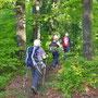 Bereits nach 10 Minuten treten wir Richtung Rumpel in den Wald ein