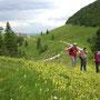 Blick zurück zum Althüsli und dem höchsten Solothurner, der Hasenmatt rechts