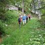 im Wald auf den Jurahöhen