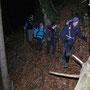 Baumstamm auf dem Wanderweg
