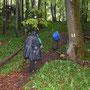 nun regnet es und donnert zwischendurch, aber im Wald sind wir gut geschützt