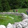 Welche Funktion dieses Biotop bei Perroude de Vaud zu erfüllen hat, finden wir nicht heraus