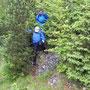 Es ist Aufgabe des Wanderleiters das Wasser aus den Büschen zu schütteln