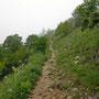 Weiter oben wird der Wanderweg immer schmaler, bevor es dann endgültig in die Felsen geht